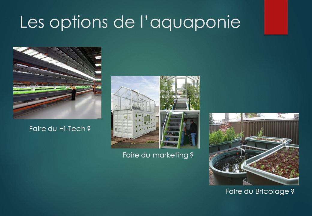 Les 3 options de l'aquaponie