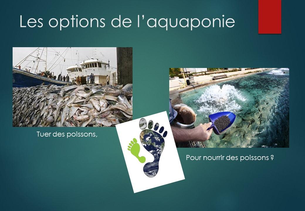 Tuer des poissons en mer pour nourrir des poissons sur terre !