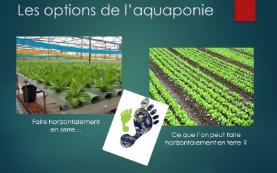L'Aquaponie 3.0, le TOP… mais dans…